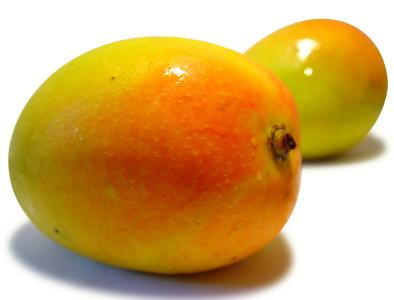 KP mango